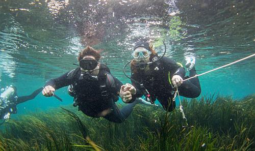 diving_in_a_river_flusstauchen