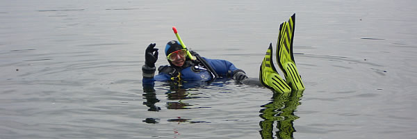 schwimmen an der oberfläche
